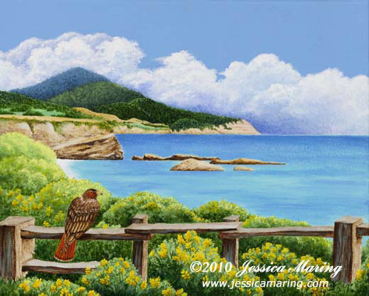 """Red-Tailed Hawk at Ano Nuevo"", a painting of a hawk beside the ocean by landscape artist Jessica Maring"