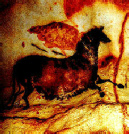 A photo of the Striped Mare of Lascaux