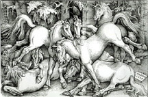 A photo of a Hans Baldung Griend 1534 woodcut of horses, an excellent example of the horse in Renaissance art